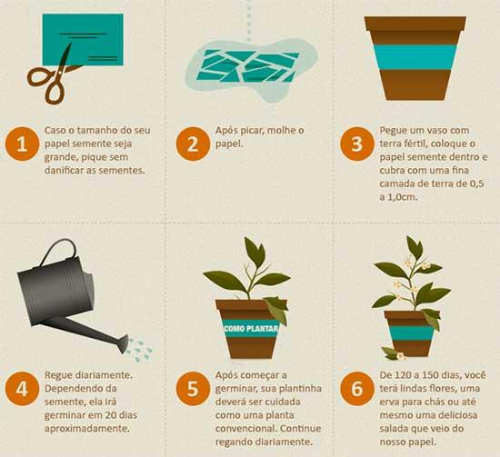 Plantar Convite Papel Semente